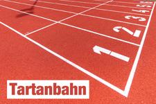 Tartanbahn Seckenheim Mannheim Leichtathletik